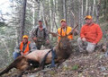 Happy group of hunters with an elk.