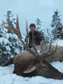 Snow brings out the elk making a successful hunt.