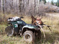 Hauling an elk on an ATV makes a difference.