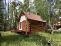 DIY hunting cabin.