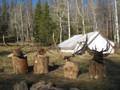 Successful elk camp.