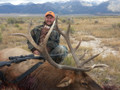 Guided ranch elk hunt.