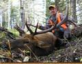 Rifle season DIY elk hunt with cabin lodging.
