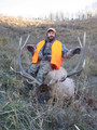 Guided Colorado elk hunt with lodging on private and public.