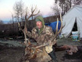 Guided pack-in tent camp elk hunt.