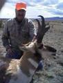 Pronghorn antelope rifle hunting.