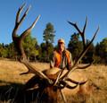 Bull elk worth waiting for.