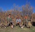 Elk and deer combo hunt.