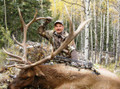 Archery Colorado elk hunt a success.