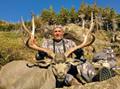 Wide and heavy mule deer buck.