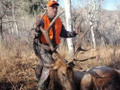 Guided elk hunter and his prize.