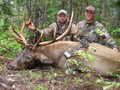 Father son bull elk hunt