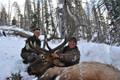 Hunt #5082 Elk/Mule Deer DIY Drop Camp