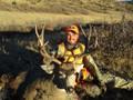 Nice mule deer buck.