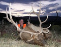 Hunt #9002 DIY Drop Camps Antelope/Elk/Whitetail/Mule Deer Private/Public