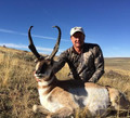 Big antelope bucks in Wyoming.