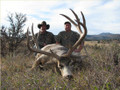 Hunt #9020 Guided Mule Deer/Whitetail/Elk/Antelope Private Property