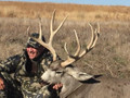 Big ranch plains mule deer