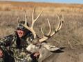 Big ranch plains mule deer