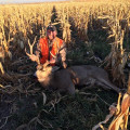 High corn makes it tough to find the big deer unless you know where to look.