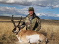 Pronghorn plains Colorado hunt