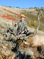 Mature bull for a mature hunter.