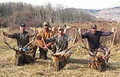 Successful group hunting trip for Colorado elk
