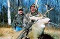 Great Grand Mesa mule deer.