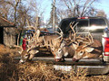 Successful group of whitetail hunters.
