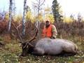 White River National Forest elk hunt