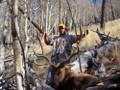 Successful drop camp elk hunt