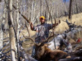 Successful drop camp elk hunt