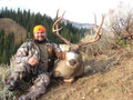 Mountain mule deer hunt in White River country.