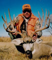 Nice big mule deer buck during rifle season.