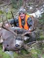 """Mule deer from 170 to 205"""""""
