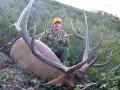Large private ranch DIY elk hunt