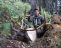 Good DIY elk.