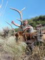 Archery season DIY elk.