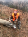 Another typical whitetail.