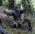 Decent bull for an archery hunt.