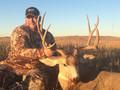 Private land mule deer hunt.