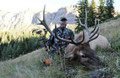 Guided archery elk from a cabin.
