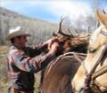 Pack-in hunt for elk and deer.