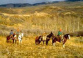 Horses get you to where you are going during hunting season.