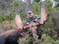 Trophy moose hunt in Canada