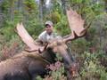 Big Shiras moose hunt.
