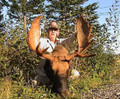 Very tall moose