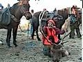 Horse drop camp and successful elk hunt.