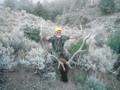GMU062 and GMU061 trophy elk hunts.