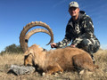 Ibex and other exotic hunting in Texas